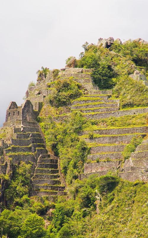 Huayna-Picchu-2